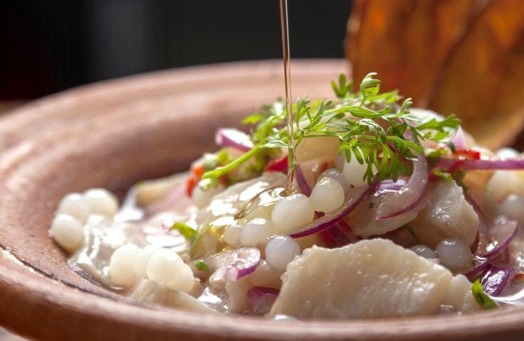 Ceviche de catuaba e outras peripécias libidinosas_Foto de Raquel Aviani (3).jpg